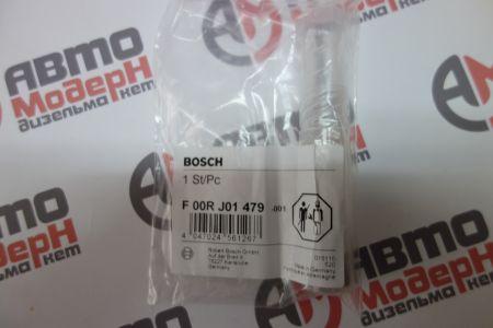 Контрольный клапан F00RJ01479